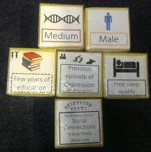 Six dice representing the genetic, environmental, lifestyle and resilience factors that affect mental health