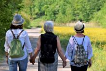 The backs of 3 women, who are holding hands